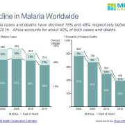 Malaria Cases and Deaths