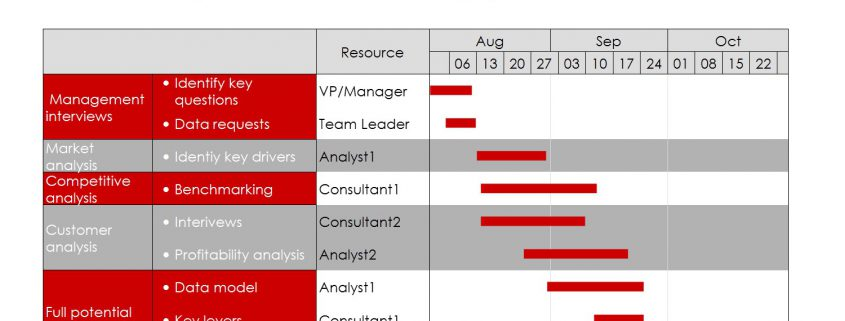 Gantt chart showing a consulting workplan.