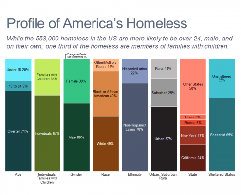 Bar chart showing the demographics of homelessness in the US