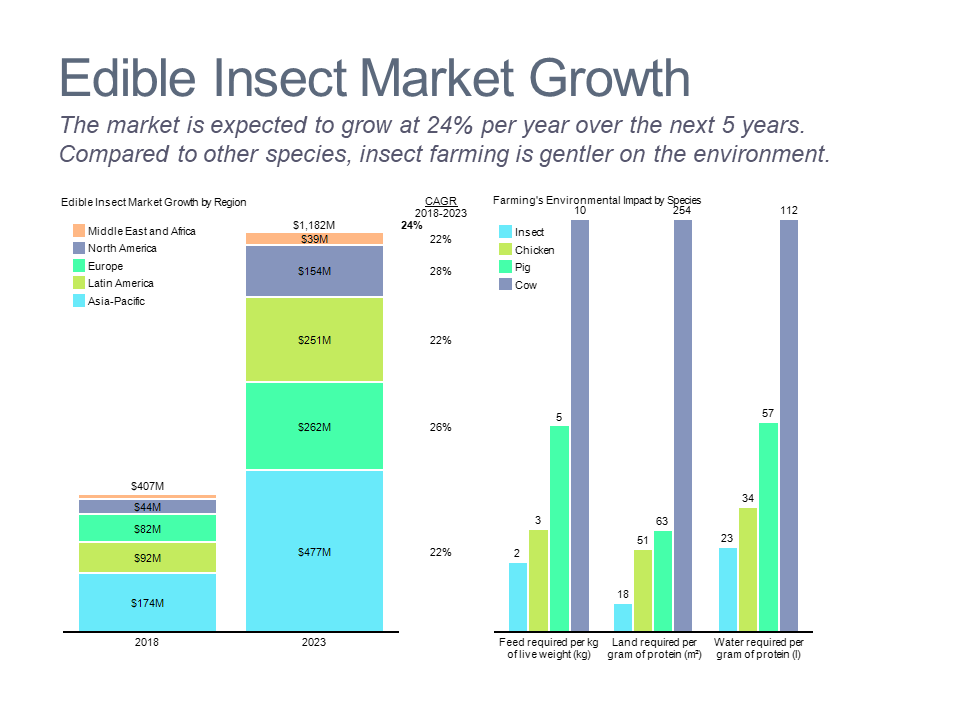 Bar charts showing edible insect market growth and environmental comparison to other protein sources